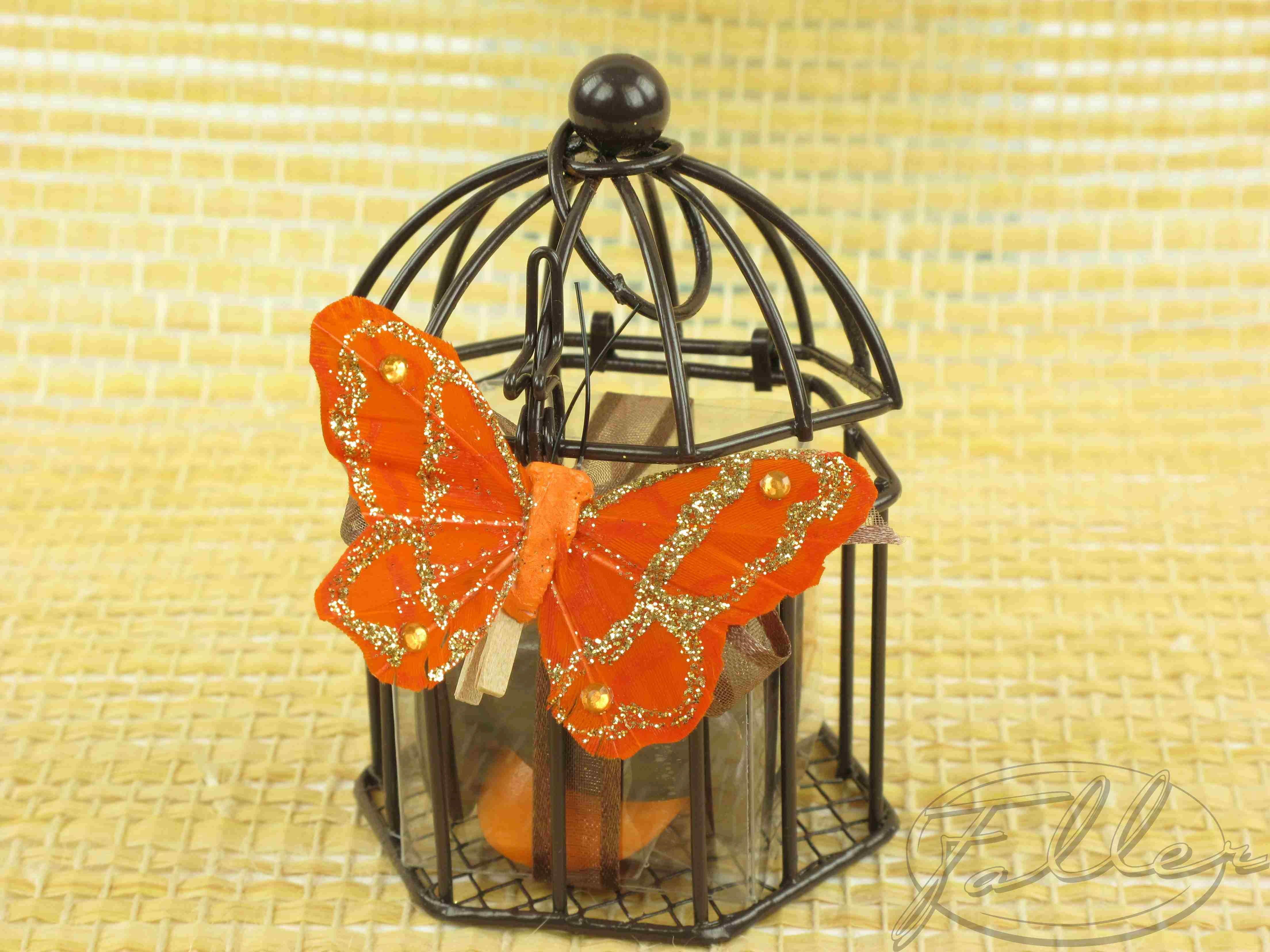 Drag es dans cage oiseau marron for Oiseau marron